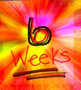 6weeks