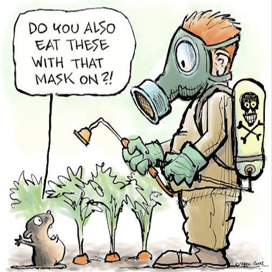 Do you wear a mask when you eat these?